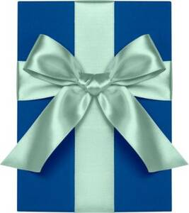 Pool Satin Ribbon